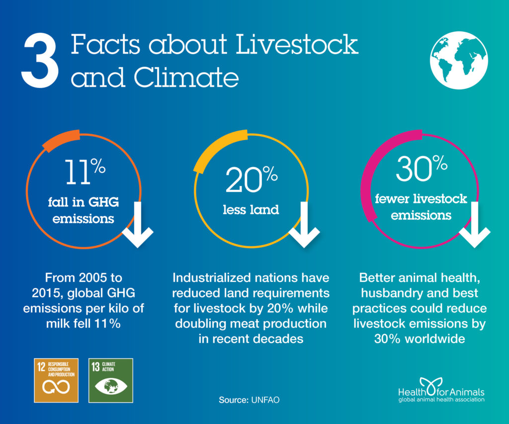 3 facts about livestock and climate