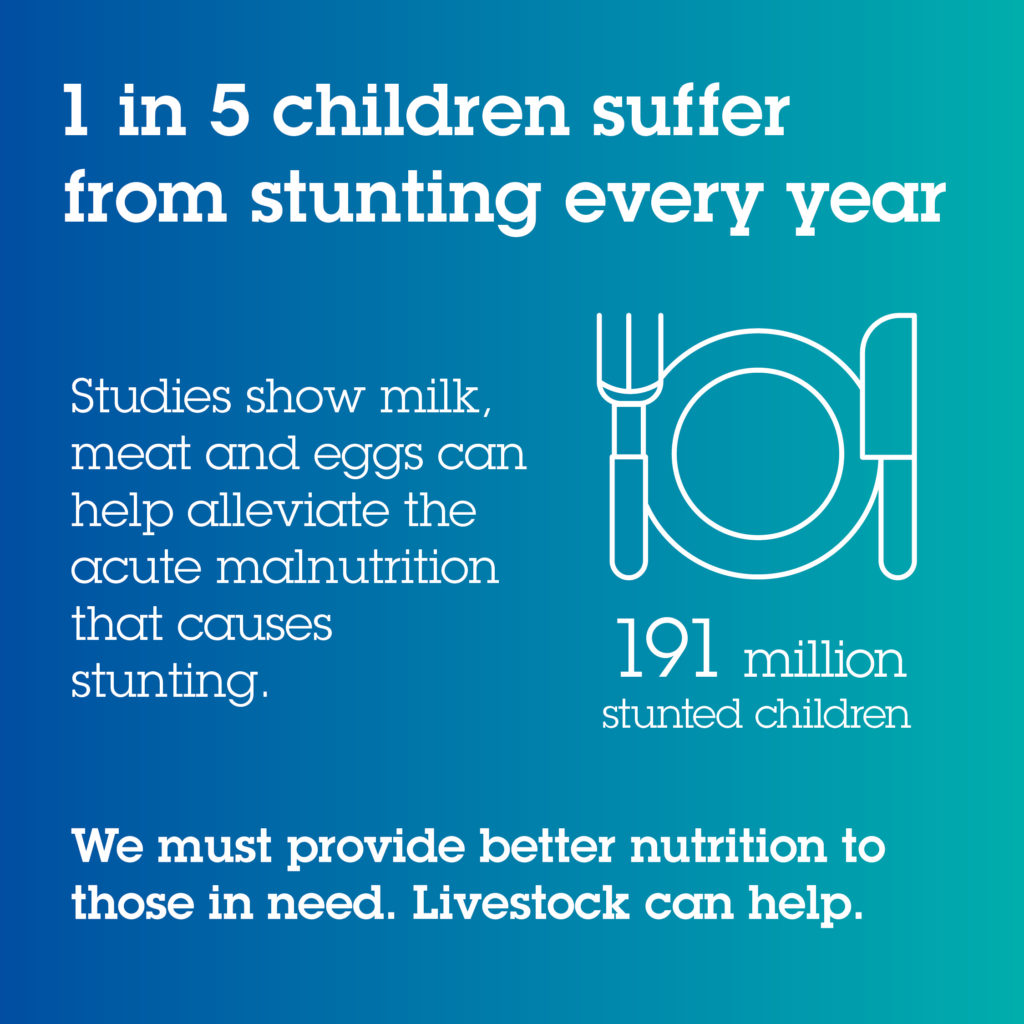 1 in 5 children suffer from stunting every year