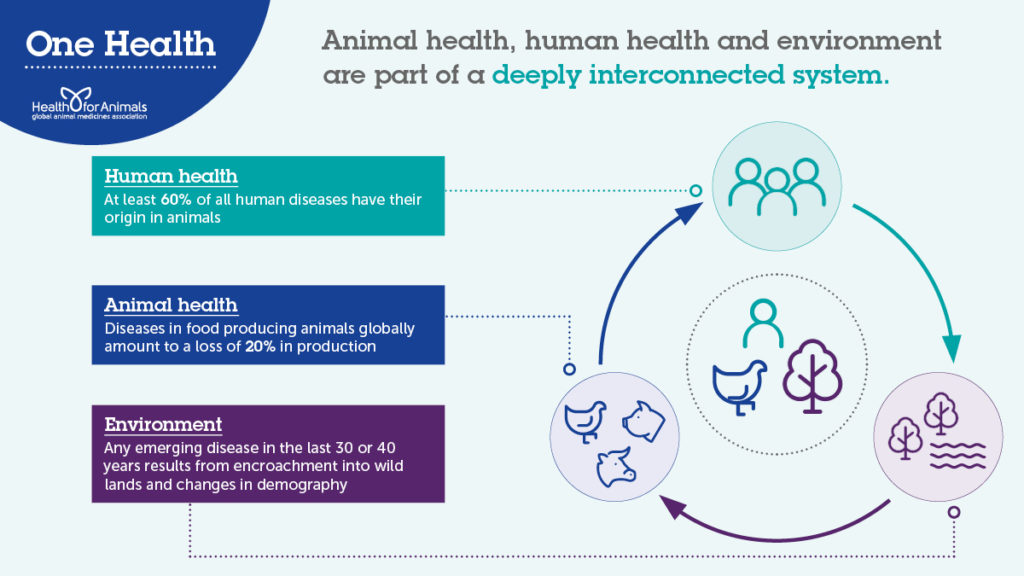 One Health infographic – Twitter