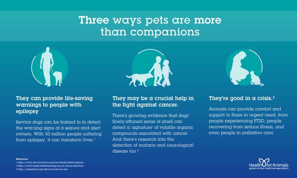 Three ways pets are more than companions