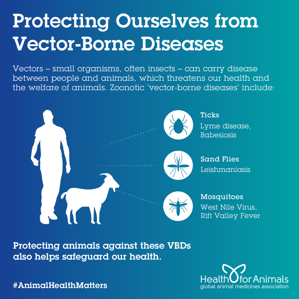 Protecting Ourselves from Vector Borne Diseases