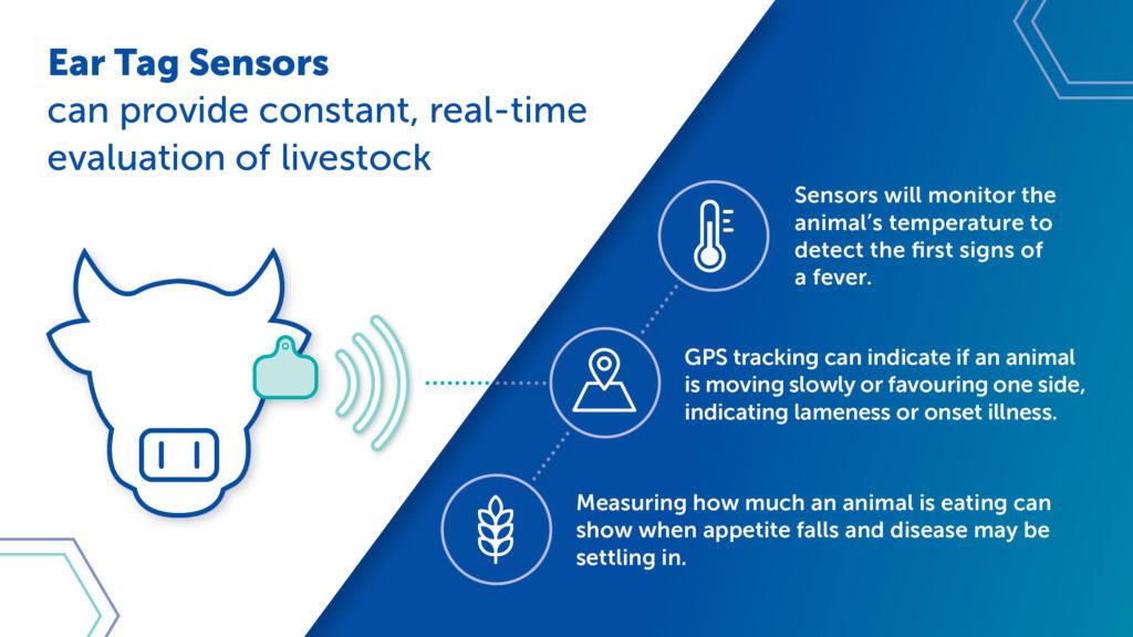 Ear Tag Sensors - Twitter